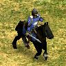 Cavalerie garde