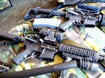SWAT team weapons