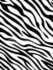 Zebra-stripes-pattern