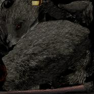 Act rat