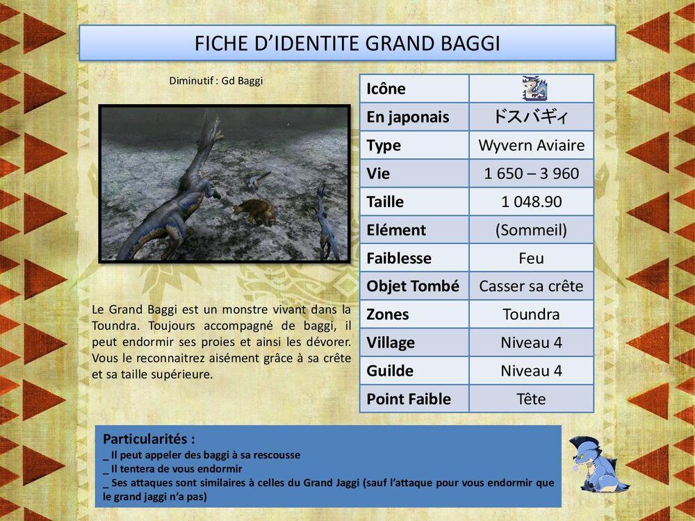 Grand Baggi-page-001