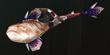 FrontierGen-Hunting Horn 996 Render 000