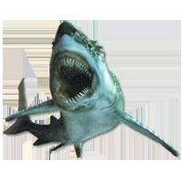 MH3-shark