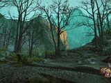 Sombre Forêt Cachée