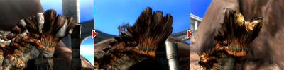 Barroth-Headwound