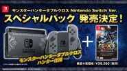 MHXX Switch Special Bundle