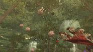 Poison Thunderbug Nest P3