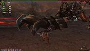 HC Akantor Tail