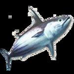 MH3-tuna