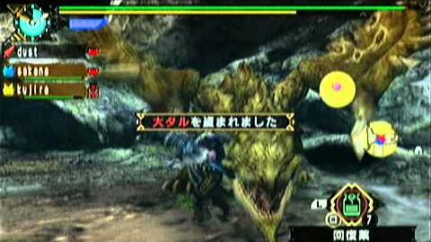 MHP3 リオレウス希少種&リオレイア希少種 silver rathalos and gold rathian
