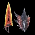MHW-Sword and Shield Render 005