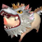 M.cochon