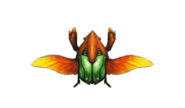 MH4-Kinsect Render 001