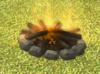 Bonfire detail