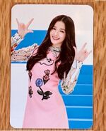 Welcome to Momoland Photocard Nancy