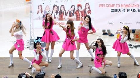 4K 161119 모모랜드 (MOMOLAND), '어기여차' 직캠 @팬사인회, 코엑스 라이브 프라자
