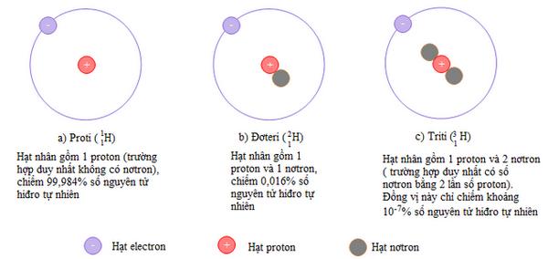Hạt nhân nguyên tử của Hidro