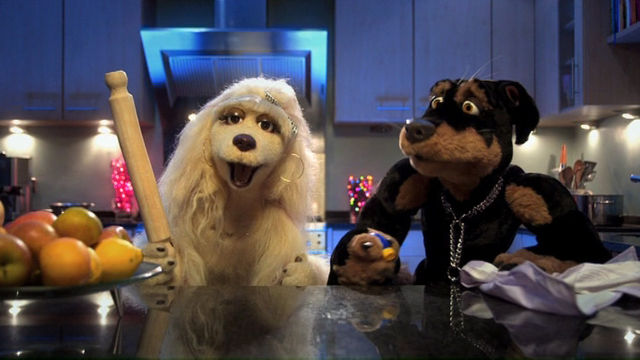 File:Destiny and john terrys dog.jpg