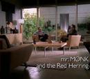 El sr. Monk y la pista falsa