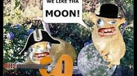 Spongmonkey Compilation!