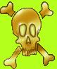 Crâne3