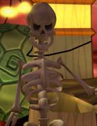 Murray-Squelette