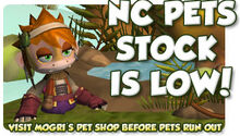 Low Pet Stock!