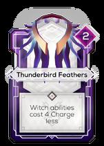Thunderbird Feathers
