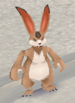 Hare MFL