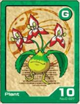 Plantcard