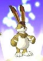 Hare MR3
