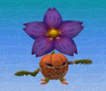 PumpkiPlant MR4