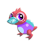 Pearl Platypus Baby