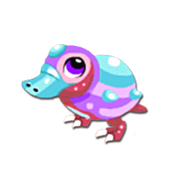Pearl Platypus Juvenile