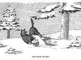 Snow Wasset