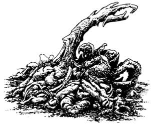 Cynothoglis image
