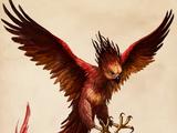 Phoenix (Harry Potter)