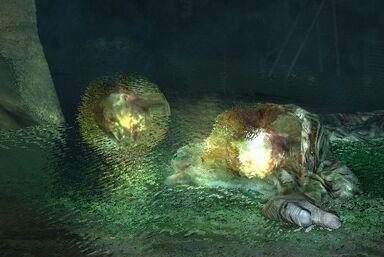 Slime slug image