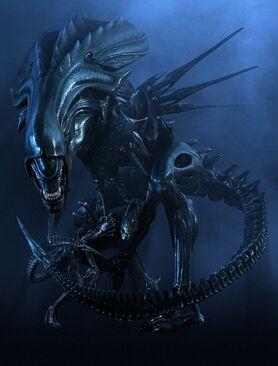 Queen AlienPress still01