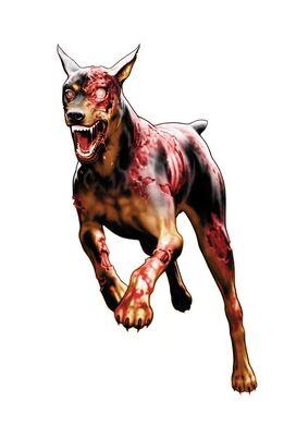 Zombie-dog