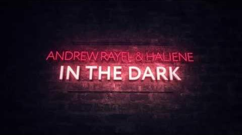 Andrew Rayel & HALIENE - In The Dark