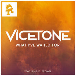 Vicetone - What I've Waited For
