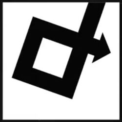Direct Diagonal Logo
