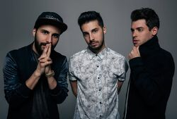Cash Cash Profile