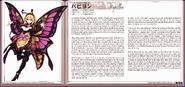 Papillon eng1