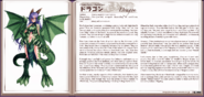 Dragon book profile
