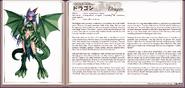 Dragon book profile