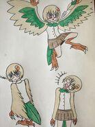 Rowlet Harpy Girl drawings