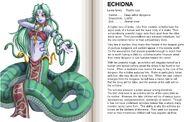 64-65 Echidna