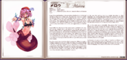 Merrow book profile